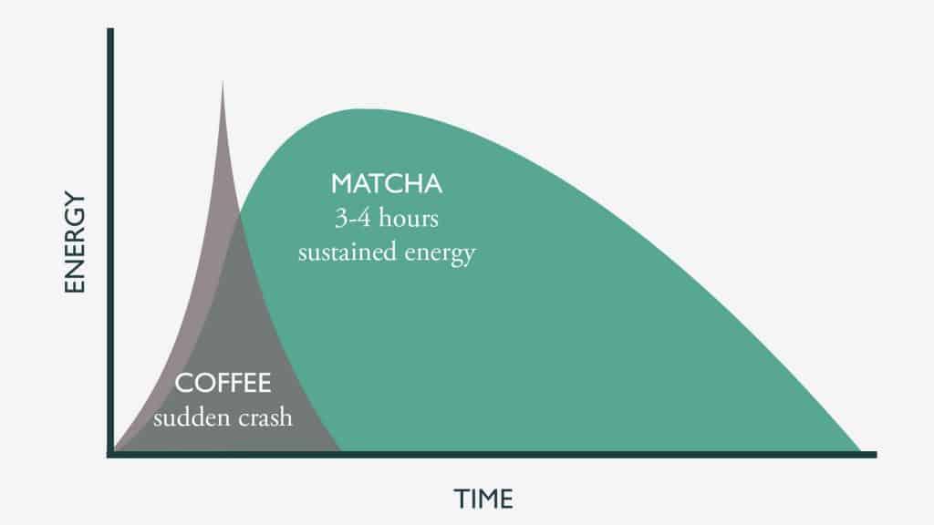 Caffeine in matcha vs coffee graph