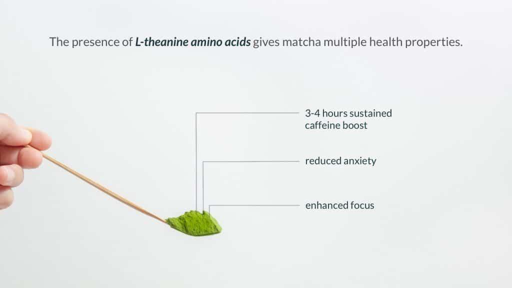 L-theanine amino acid in matcha benefits